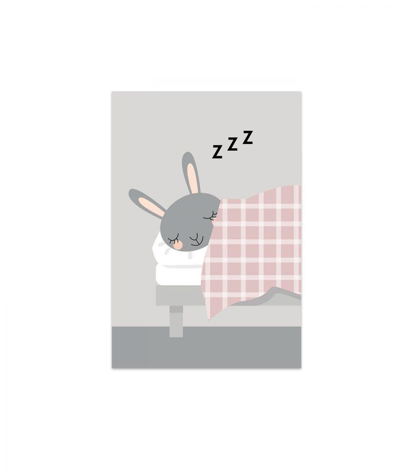 kaninen karin sover grå